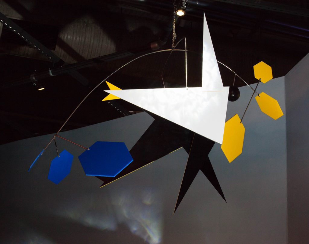 The_Flying_Penguin_1